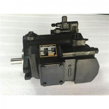 PAKER PAV10 Piston Pump