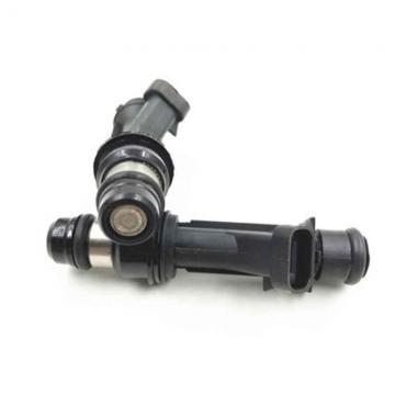 COMMON RAIL 0445110075 injector