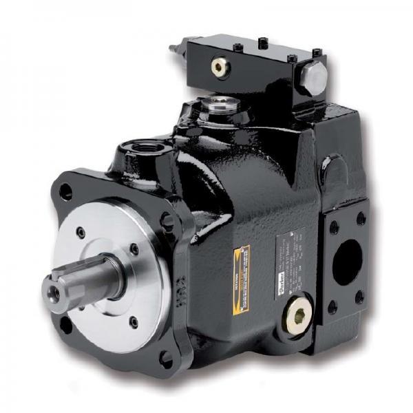 PAKER F12-110-MS-SV-S-000 Piston Pump #1 image