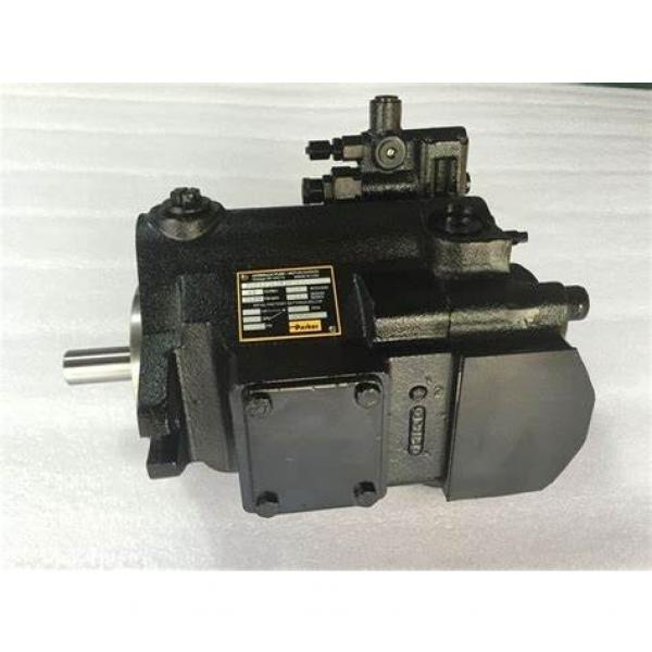 PAKER PV016 R1K1T1NMMC Piston Pump #2 image