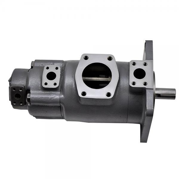 Yuken PV2R12-6-65-F-RAA-40 Double Vane pump #1 image